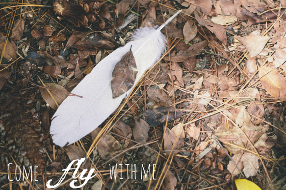 Feather on Ground text